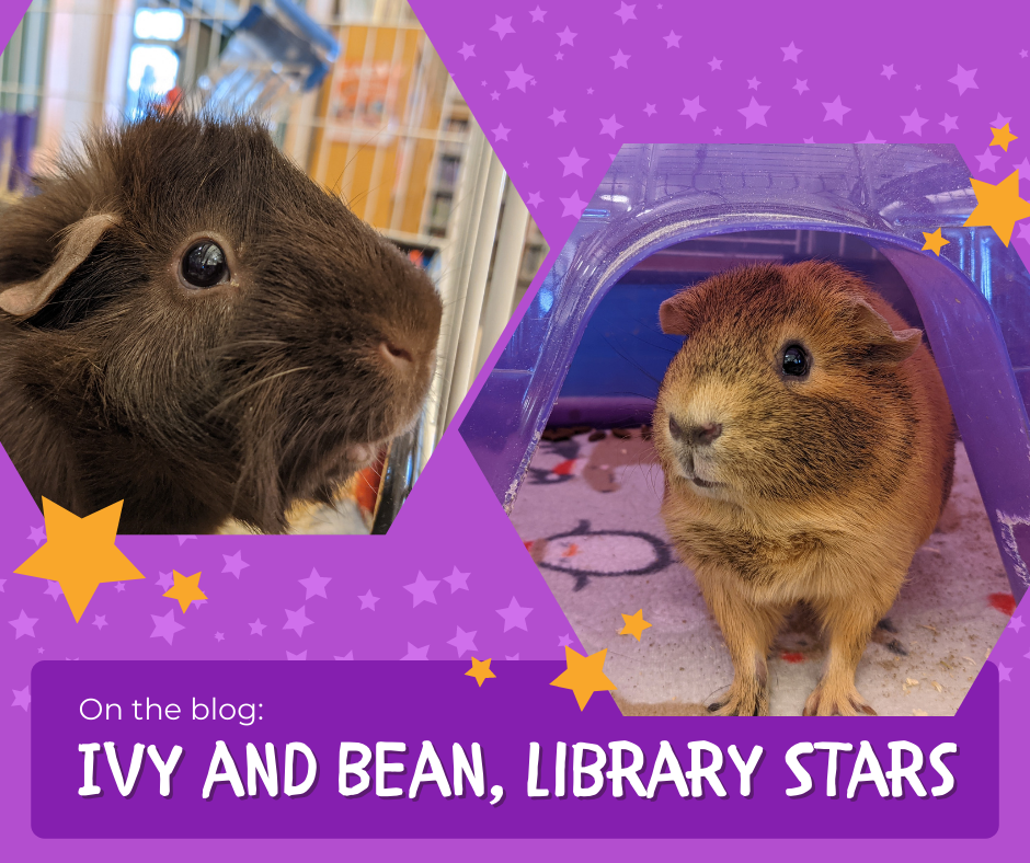 Ivy and Bean: Library Stars